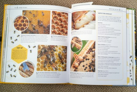 the bee book 2