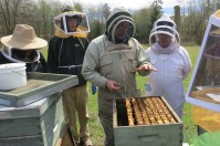 bee class at tugwell 1
