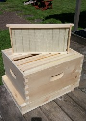 hive build 05