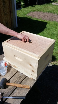 hivebuild 07