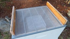 screen top of hive