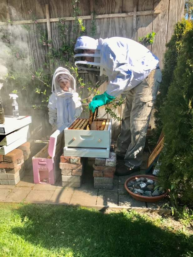 Setting up the Hive
